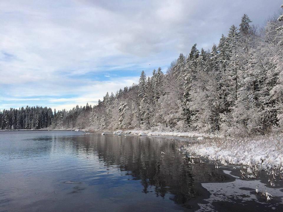 Vinter·retreat Med Ditte Bykaerholm Nielsen