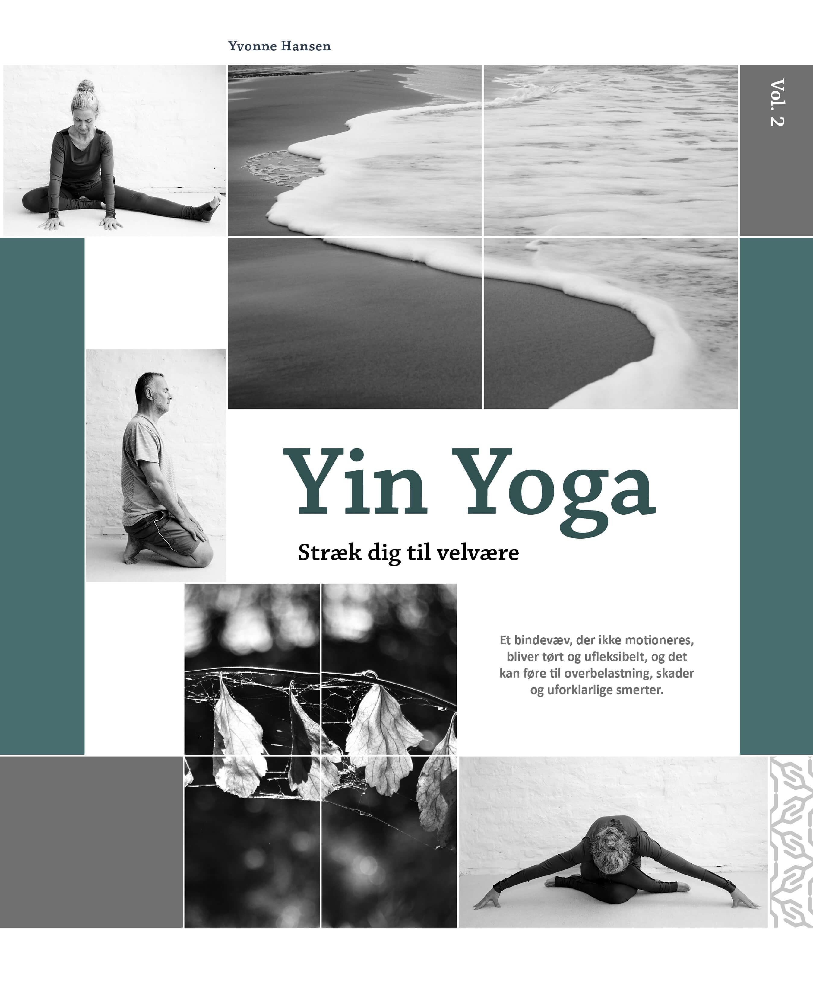 """Anmeldelse af  """"Yin Yoga – Stræk dig til velvære, vol. 2"""""""