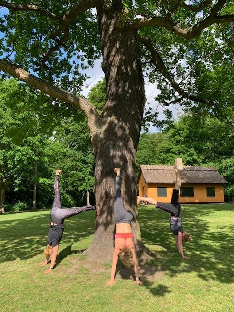 Yoga udenfor